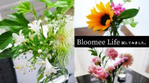 9/14更新/9回目【Bloomee Life】ポストに届くお花のサブスク【口コミ・クーポン・花の質などは?】